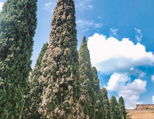 gita in una Brianza inaspettata: la Toscana a due passi da casa