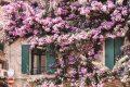 Weekend lungo tra Lago di Garda e Valpolicella
