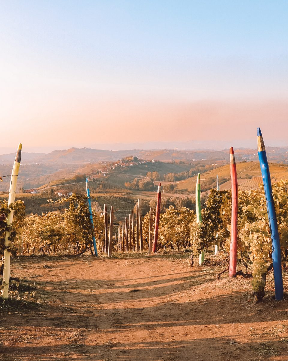 weekend nelle Langhe: un itinerario tra vino, tartufo e foliage